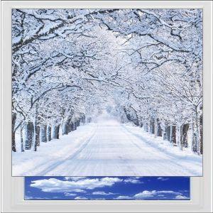 Winter Landscape Digitally Printed Photo Roller Blind