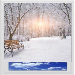 Winter Park Digitally Printed Photo Roller Blind