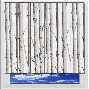 Woodland Silver Birch vertical blind